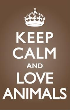 Keep Calm and Love Animals