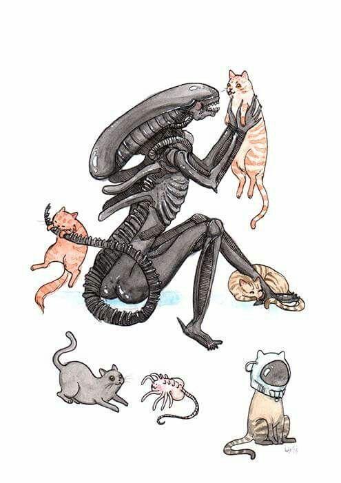 84 best alien avp predator images on pinterest
