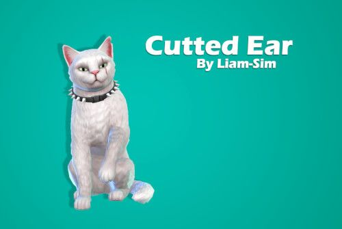 Cat Cutted Ear For The Sims 4 By Liamsims Sims Pets Sims 4 Pets