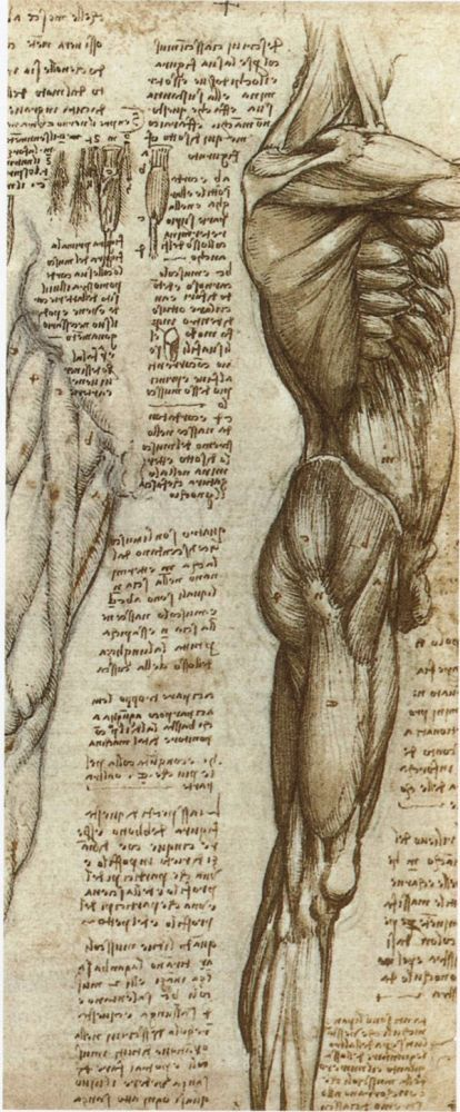 Картины Леонардо да Винчи и биография художника