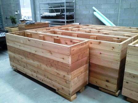Cafe Planters For A Coffee Franchise Ready To Go