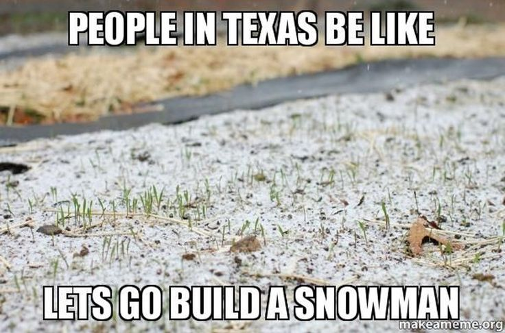 16 Texas Memes That Will Make You Laugh Every Time
