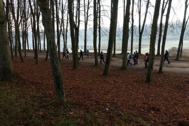 Marche Nordique & Fitness plein air / Marly-le-roi Marche nordique Parc Marly Parc Beauregard