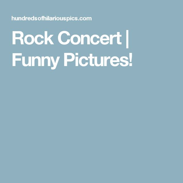 Rock Concert | Funny Pictures!