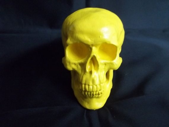 Classic Human Skull Model in Yellow and Assorted Colors Punk