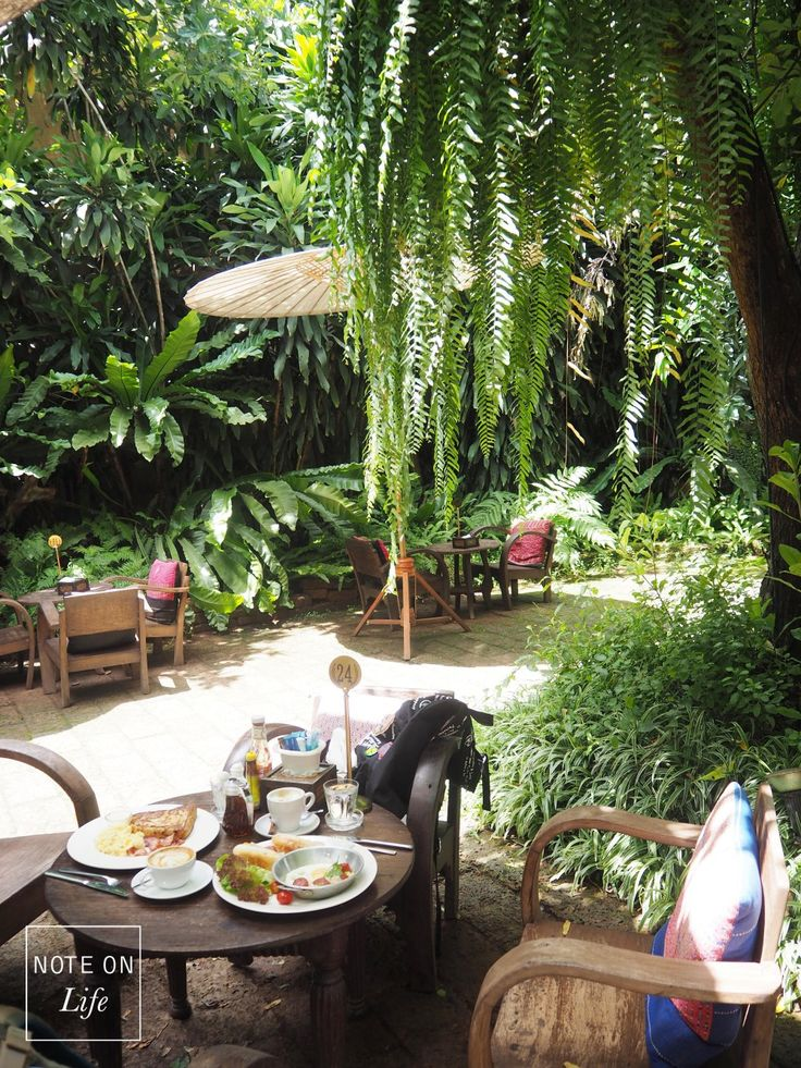 Chiang Mai Thailand Fern Forest Cafe I Food I Breakfast I Travel I Restaurant I Cozy