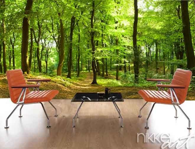 Fotobehang Weg in bos - Is het uw slaapkamer, keuken of badkamer die wel een kleine make-over kan gebruiken? Voor elke ruimte en elk gebouw heeft Nikkel-art.be het perfecte fotobehang in huis. http://www.nikkel-art.be/fotobehang-958-weg-in-bos.html