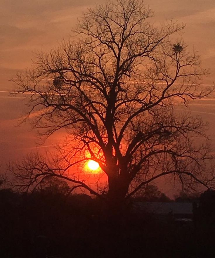 Sunset - Warner Robins, Georgia
