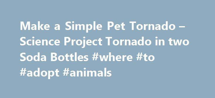 Make a Simple Pet Tornado – Science Project Tornado in two Soda Bottles #where #to #adopt #animals http://pet.remmont.com/make-a-simple-pet-tornado-science-project-tornado-in-two-soda-bottles-where-to-adopt-animals/  Make a tornado with two Soda Bottles Materials Two empty 2-liter soda bottles. One Tornado Tube plastic connector (available from science museums, science stores, novelty stores, and some scientific supply companies). Or you can make your own using a washer with a 3/8 hole in it…