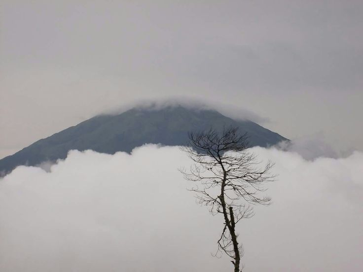 Mount merapi ,central java @freedom tour indonesia