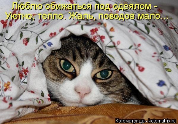 Люблю обижаться под одеялом -  Уютно, тепло. Жаль, поводов мало...