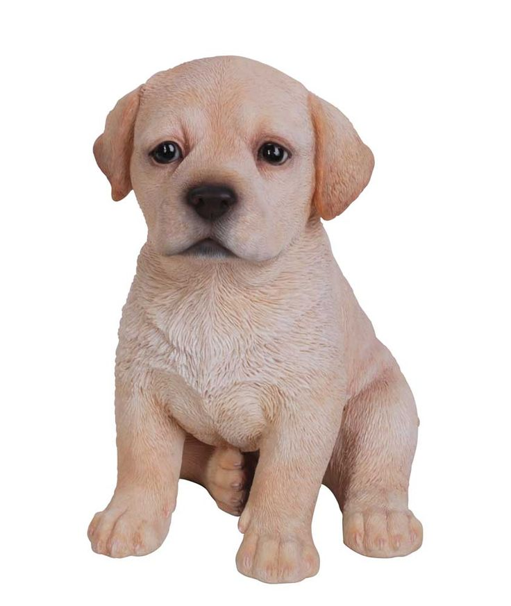 Garden Ornaments Animals Dogs Superb Dog Garden Statues for