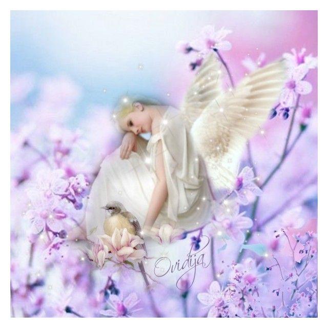"""""""Angels on Earth"""" by ovidija ❤ liked on Polyvore"""