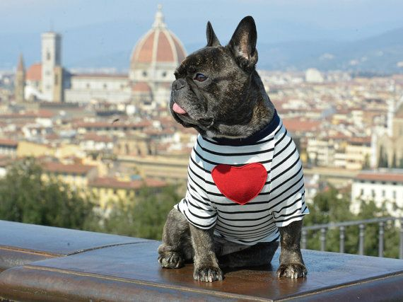 VALENTINO T-Shirt for dog french bulldog frenchie by BULLOVE