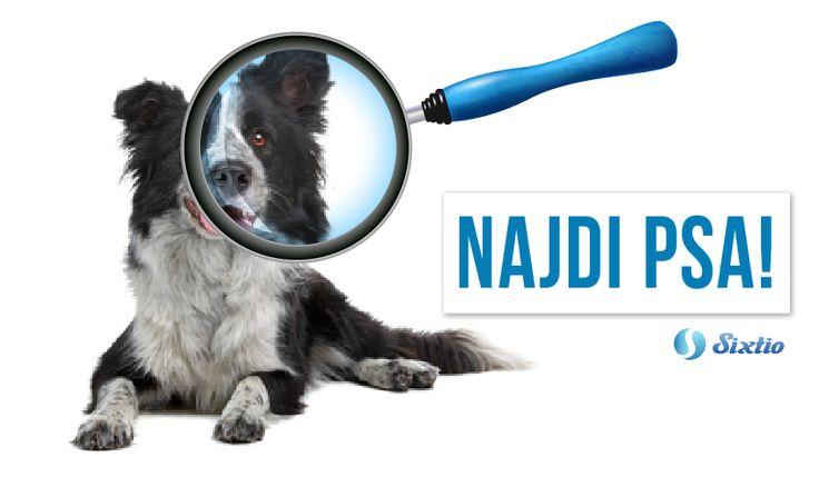 Co uděláte, když se vám ztratí #pes? Nyní by k tomu stačilo pouze na mobilu zmáčknout jedno tlačítko! Novozélandská pobočka značky Pedigree vytvořila kampaň Pedigree Found ve spolupráci s Colenso BBDO a Googlem. Když se na aplikaci registrujete a váš pes se ztratí, stisknete jedno tlačítko, díky němuž se vaše zpráva odešle všem lidem v okolí (i když aplikaci nemají nainstalovanou). Tento super nápad zaslouženě vyhrál stříbrného lva na letošním Cannes Lions v rámci kategorie #Mobile.