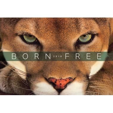 Promotional Desk or Wall Calendars - Born Free Wall Calendar :: 2016 Diaries and Calendars :: Promo-Brand :: Promotional Branded Merchandise Promotional Products l Promotional Items l Corporate Branding l Promotional Branded Merchandise Promotional Branded Products