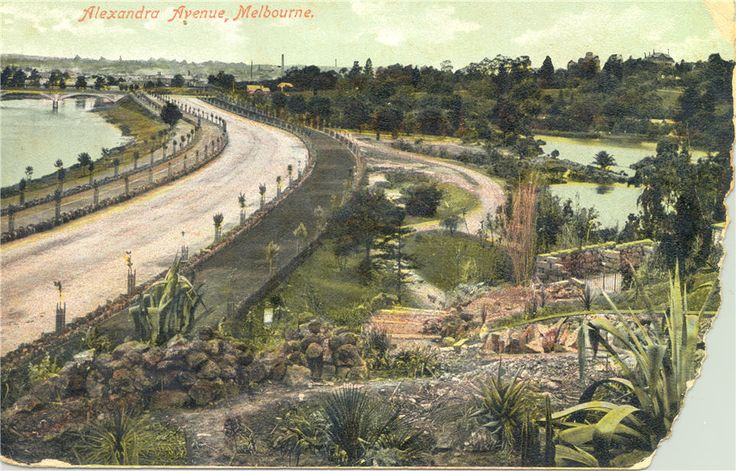 Alexandra Avenue, Melbourne, ca. 1900. Colour postcard of a new section of Alexandra Avenue near the Ornamental Lake of the Botanic Gardens. At the top left-hand side is Morrell Bridge, linking Anderson Street.