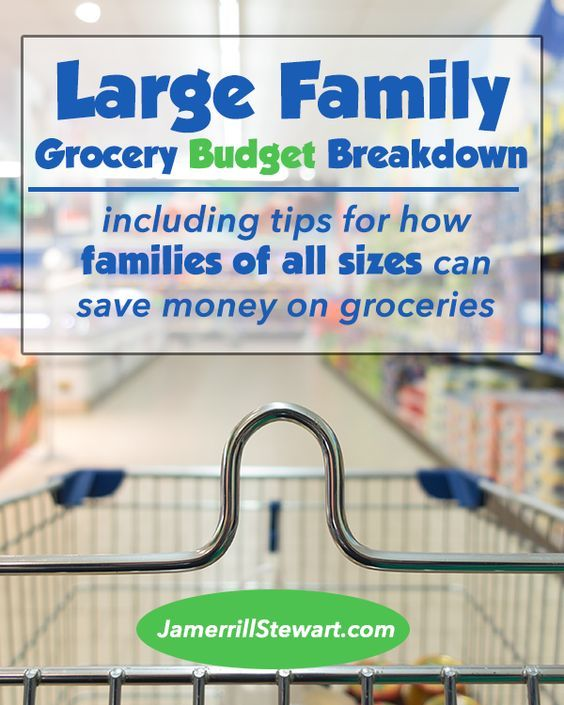 Large Family Grocery Budget Breakdown with Large Family Grocery List!
