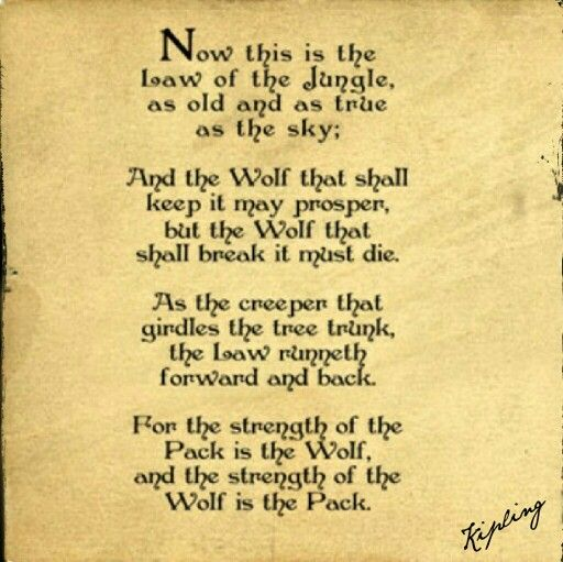 Now this is the Law of the Jungle -- as old and as true as the sky; And the Wolf…