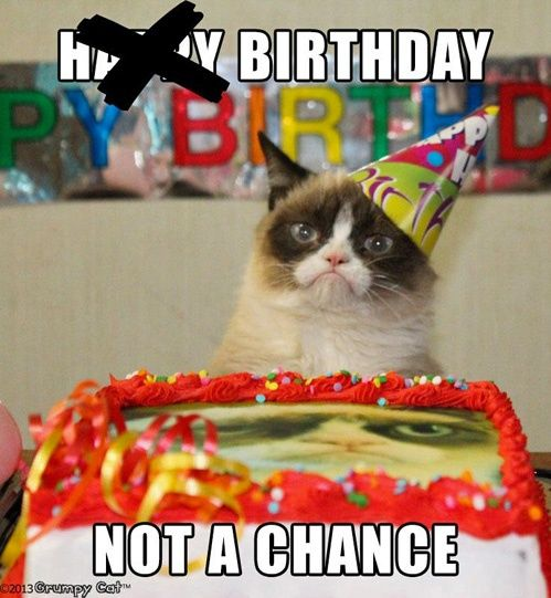 Grumpy Cat birthday ...For more funny birthday quotes and hilarious birthday visit www.bestfunnyjoke...