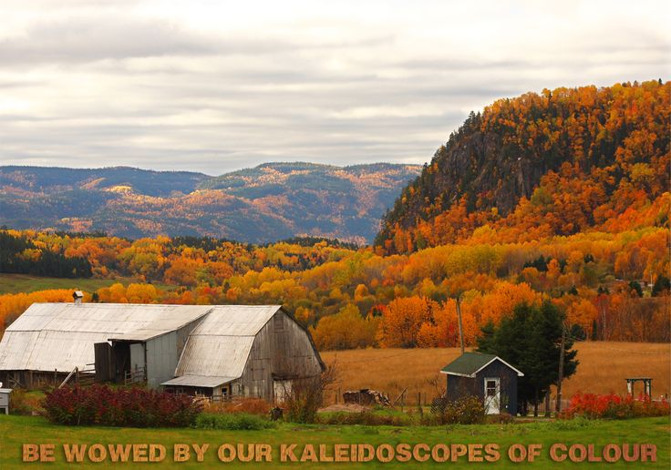 Reason #122 to visit #Saguenay_Lac is to be wowed by our kaleidoscopes of color. #175reasons
