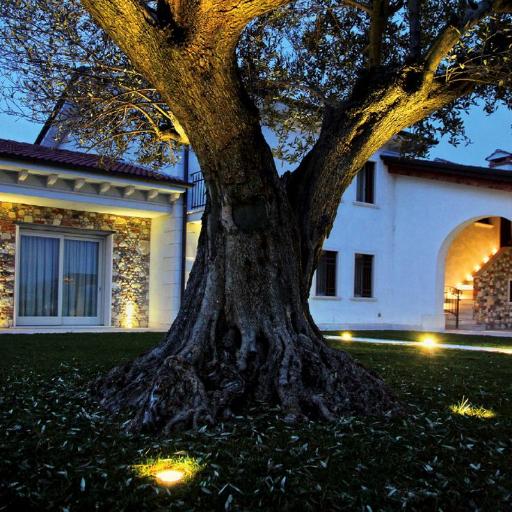AGAVE - Adjustable recessed floor spotlight, ideal for the lighting of gardens, sidewalks and paths. #LED #light_e_design #design #illumination #lamp #lightdesign #outdoor #lighting #lamp #pendant #iluminacion #decor #home #decoracion #lampara