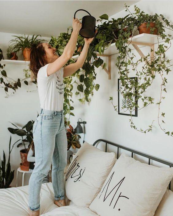 Bed Room plants indoor design decoration