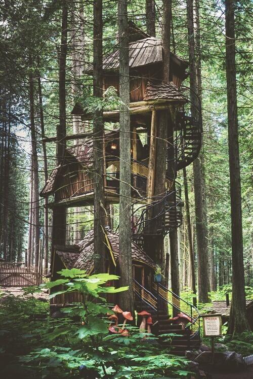 Treehouse, British Columbia casa na árvore em dois níveis com escada caracol