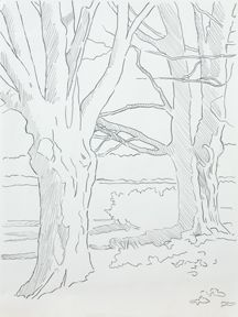 Painting Trees in Watercolor, Pen & Ink with Claudia Nice