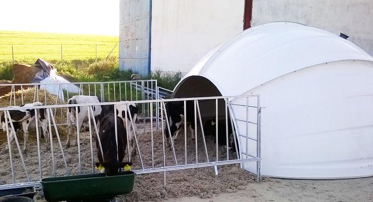 Adăpost pentru animale tip IGLU XXL