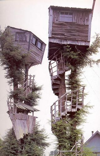 incredibly unstable-looking treehouses.
