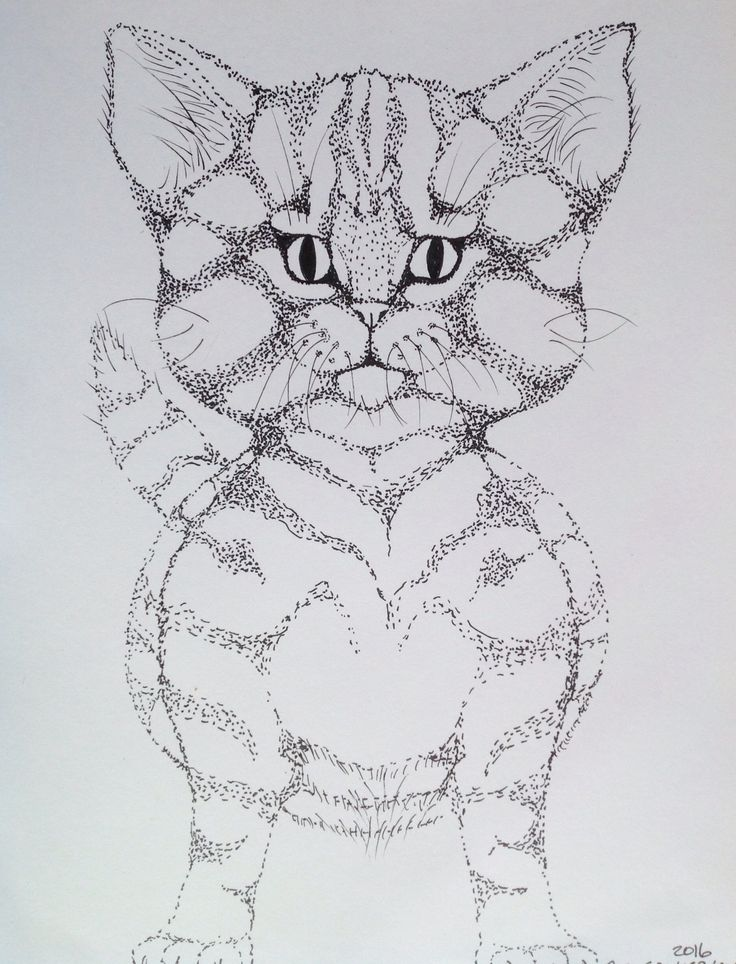 Cute cat design
