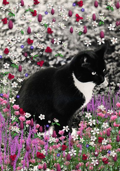 Absolutely in love with this beautiful creation of flowers and feline - black and white tux kitty in flowers Freckles in Flowers II #DianeClancy Art Card: https://www.etsy.com/listing/35636707/painting-digital-collage-freckles Pillow: http://www.zazzle.com/freckles_in_flowers_ii_tuxedo_kitty_cat_pillow-189755893422071794 (lots of other products)