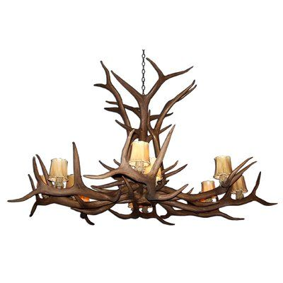 Attwood Antler Elk Single Tier 12-Light Candle-Style Chandelier Finish: Black/Brown, Shade Color: No, Shade Included: No - http://chandelierspot.com/attwood-antler-elk-single-tier-12light-candlestyle-chandelier-finish-blackbrown-shade-color-no-shade-included-no-737789464/