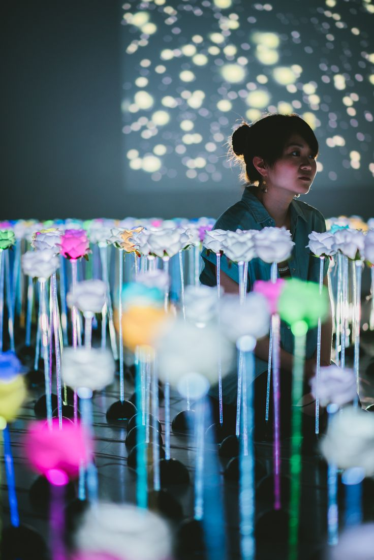 projection with colorful lighting flowers #flowergarden #light #art #installation