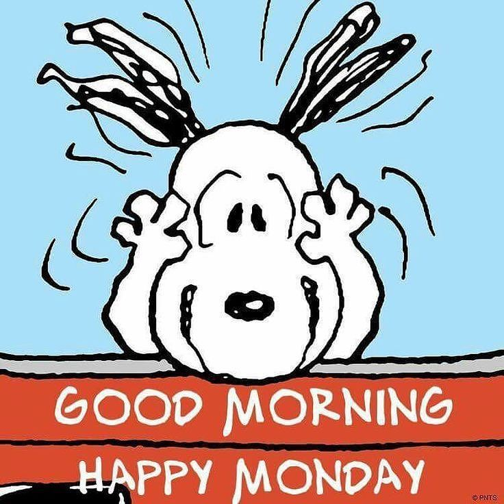Good Morning...Happy Monday everyone! #ItsMonday #GoodMorning #HappyMonday #NewDay #NewWeek #Snoopy #Peanuts #HaveAGreatDay #HaveAnAwesomeWeek