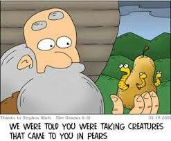 We were told you were taking creatures that came to you in pears. :-)