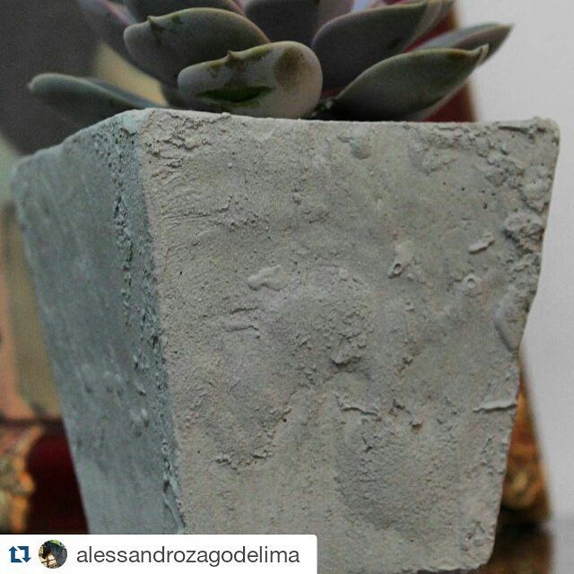 #Repost @alessandrozagodelima with @repostapp  #FeitoPorMim:  A VENDA   Vaso em cimento 12x15cm (larg. x alt.) com a popularmente conhecida Planta Fantasma Rosa de Pedra ou Crássula (Graptopetalum Pataguayense) uma suculenta de folhas curtas em formato de roseta.  Última peça; Informações InBox Facebook.  #cimento #concreto #vaso #feitoamão #arte #decoração #plantafantasma #rosadepedra #crássula #Graptopetalum  #GraptopetalumPataguayense #suculenta #plantasuculenta #love #vs #vsco…