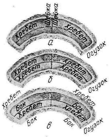 Sable - Три варианта раскроя воротника «молодежный» из двух шкурок: а—шкурки целиком; б—вразбивку хребтом к хребту; в—вразбивку хребтом к боку