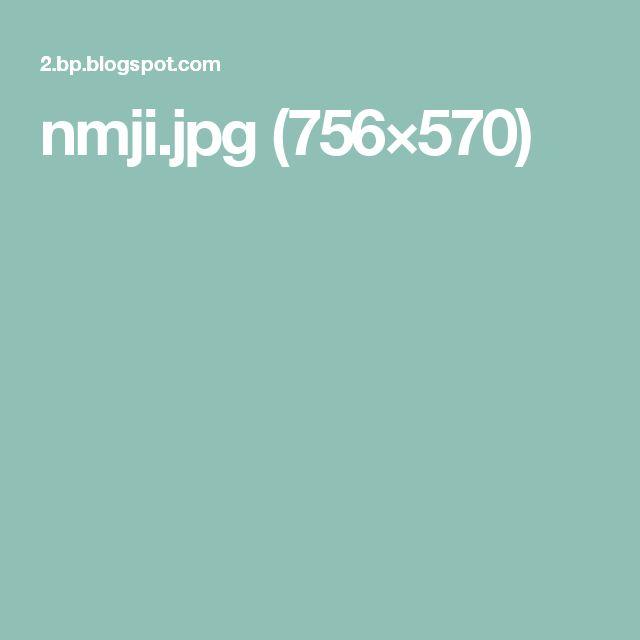 nmji.jpg (756×570)