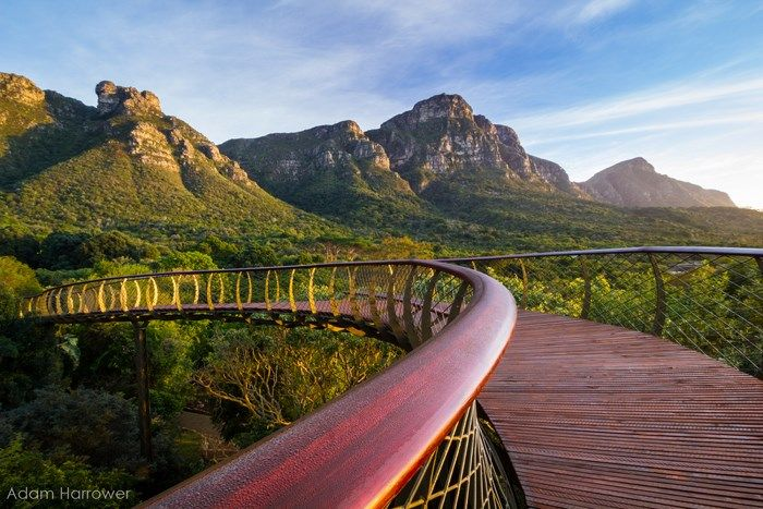 The Boomslang, a unique elevated walkway in the Kirstenbosch Gardens, Cape Town, South Africa