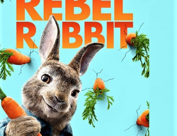 Best 25+ Peter Rabbit Movie Ideas On Pinterest Peter Rabbit   Resume Rabbit  Review  Resume Rabbit Review