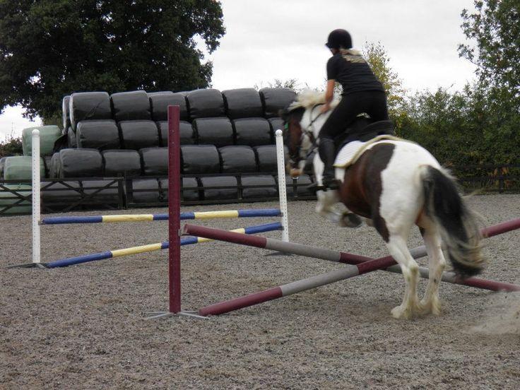 Team Solent Equestrian. For more information on the team visit: www.solent.ac.uk/equestrian
