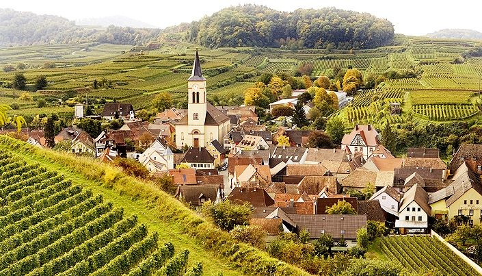 SALWEY, in Oberrottweil, Kaiserstuhl, Baden, Germany. Grand Crus of Pinot Noir in Germany.