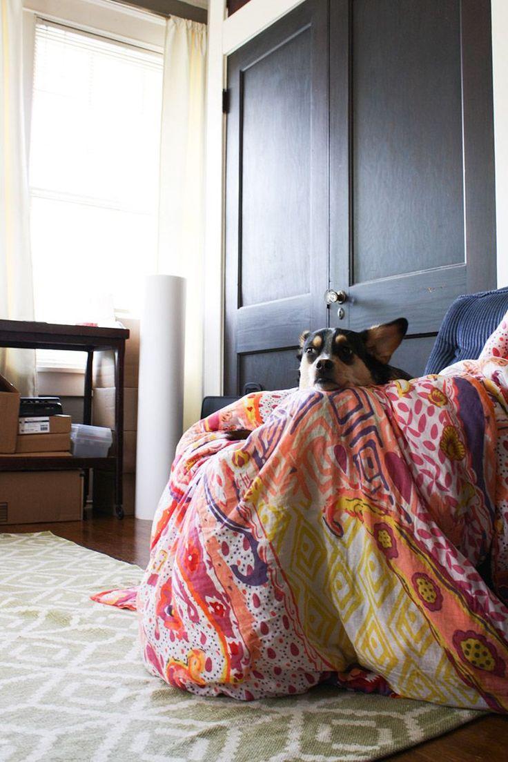 Студия иллюстратора | NM House  Если вы когда-нибудь заглянете в штат Арканзас, обязательно посетите городок Литл Рок. Там находится уютная студия иллюстратора Салли Никсон. Вы наверняка найдете ее увлеченно работающей над очередным проектом, и, дожидаясь возвращения Салли из мира искусства, сможете поиграть с ее верным «напарником» и другом – собакой Сьюки. #animals #interior #dog
