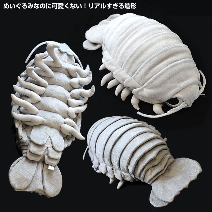 SO CUTE. Cuddly giant isopod toy! - Boing Boing