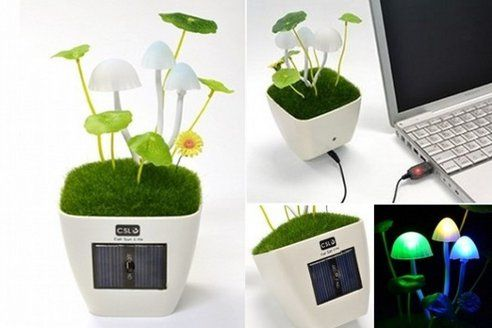 Redecorate your office desk...Grow Magic Mushrooms On Your Desk With This Solar-Powered Lamp..