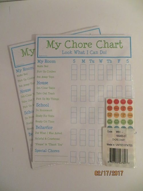 My Chore Chart Look What I Can Do Sticker Chart Magnetic Lot of 2