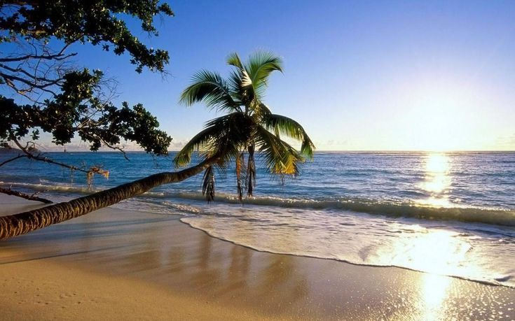 Download These Free Beach Wallpapers All Year Round Beach Wallpaper Beach Pictures Beautiful Beaches