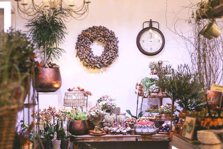 Srdečne Vás pozývame k nám do predajne. Vytvorili sme pre Vás novú kolekciu s názvom Jeseň v prírode V ponuke máme čerstvé rezané kvety izbové kvety svietniky lampáše veľa jesenných kvetov do záhrady a na balkóny. Naaranžovali sme zaujímavé vence na dvere sušené kytice aj interiérové dekorácie. Tešíme sa na Vás!  #kvetysilvia #kvetinarstvo #kvety #jesenvprirode #love #instagood #cute #follow #photooftheday #beautiful #tagsforlikes #happy #like4like #nature #style #nofilter #pretty #flowers…